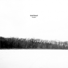 Hate Forest - The Gates ++ LP (lim.400)