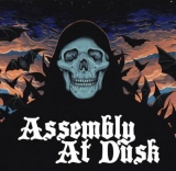 Assembly At Dusk - Assembly At Dusk ++ LP